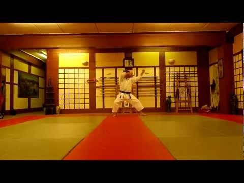 @Skye James Snider   REPLICATE THE $)@!&% OUT OF THIS.  Heian Nidan Shotokan Karate Kata