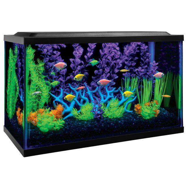 Shop tetra for a wide variety of glofish aquarium kits for Fish tank heater walmart
