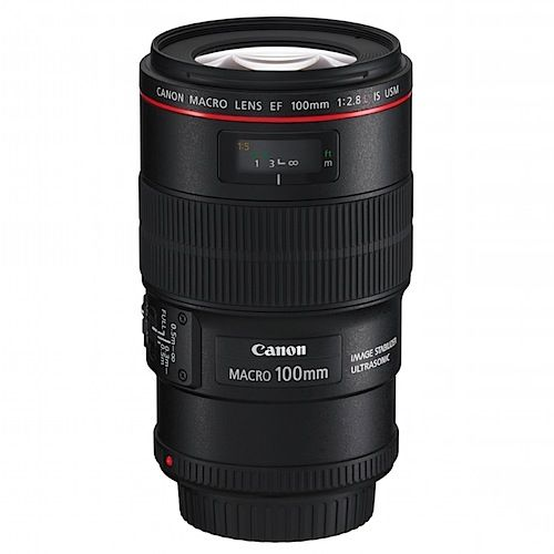 33 Most Popular DSLR Lenses Among Our Readers (Digital Photography School)