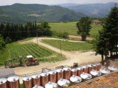 Tuscany Wine Tours of Frescobaldi Estates « Traveling 101
