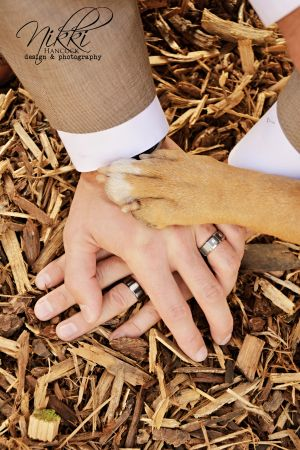 Two grooms place hands on top of each other during their barn wedding and their pet dog included. Love it!