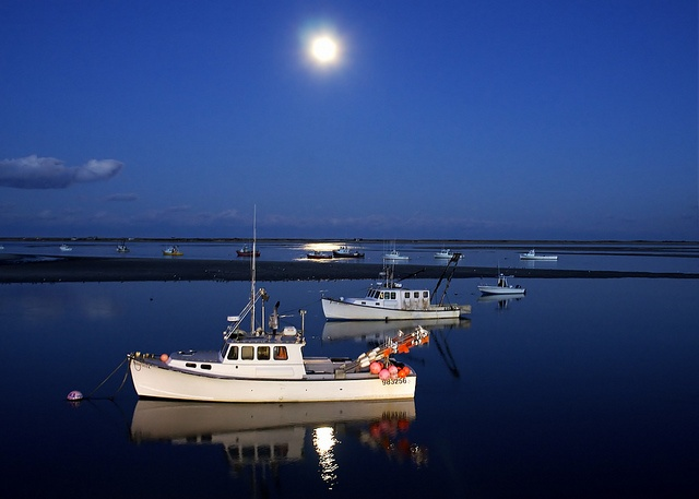 yesCod Christopher, Awesome Chris, Chris Seufert, Chatham Harbor, Chatham Fish, Blue Heavens, Christopher Seufert, Favorite, Capes Cod