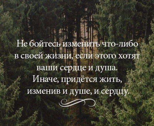 #этноспб #мысль