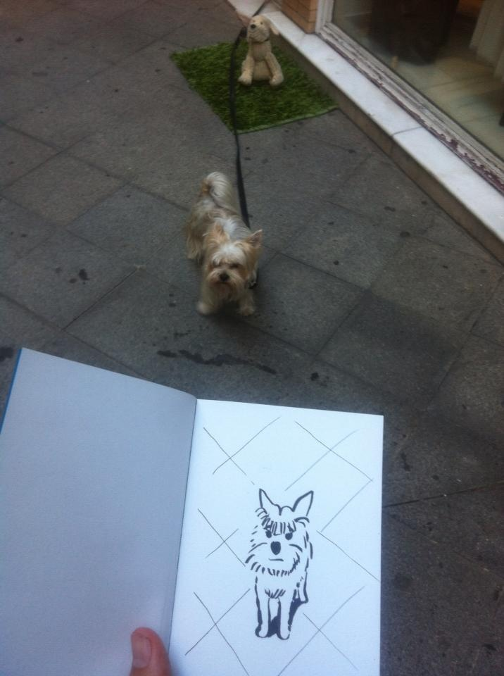 SketchShooting: Érase una vez un perro de peluche, un perro de verdad y uno dibujado:)