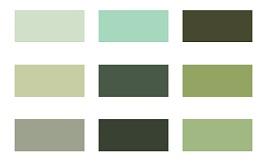 olive green palette