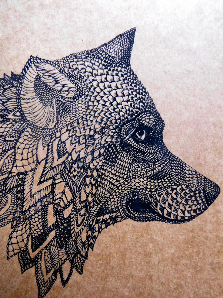269 best images about Zentangle animals on Pinterest