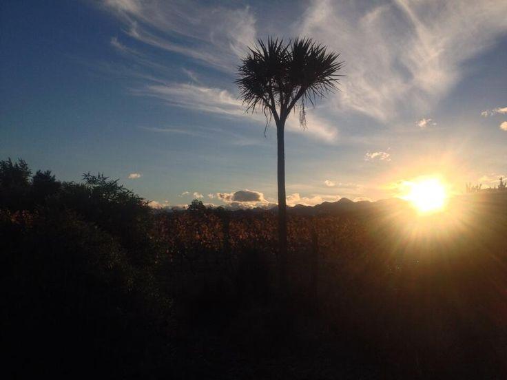 A beautiful end to a beautiful day in Marlborough #lovemarlborough #gigatownbln pic.twitter.com/HeaXUyK1ou