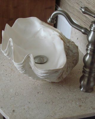 here you can wash your hands....the soul will take a bit more work now.. and this shell, is not large enough for a baptism..   \\ Giant Shell Sink