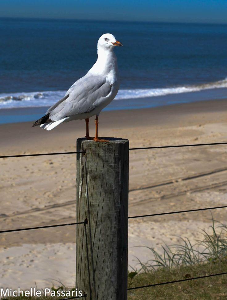 Woorim Beach