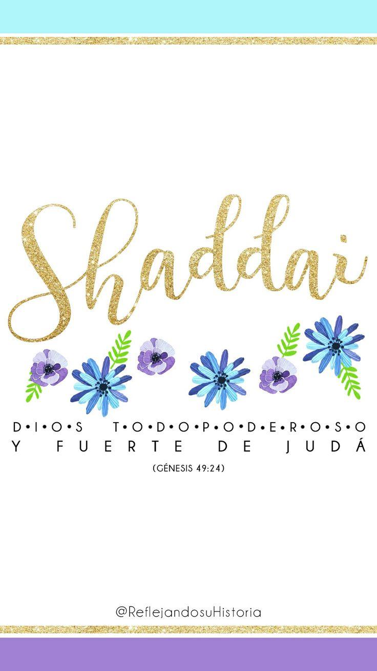 SHADDAI Dios Sanador