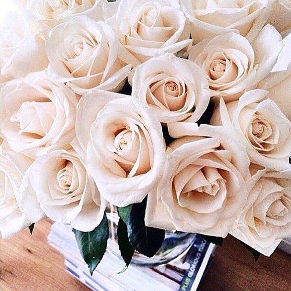 #elavonza #flower #florals #roses #bouquet #weddings #weddinginspiration #bridal #bridesmaids #bridalbouquet #monday