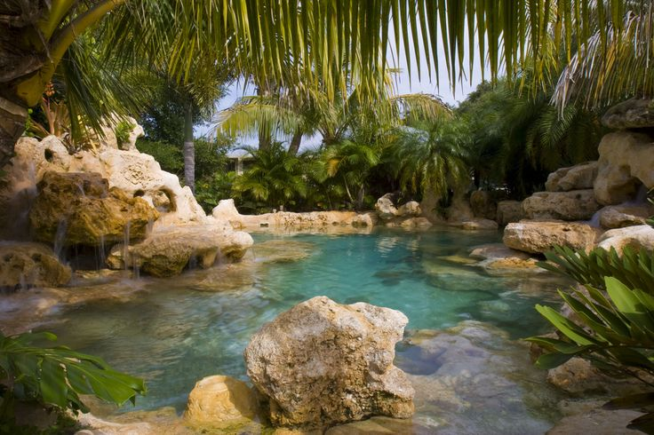 Great lagoon style swimming pool.....