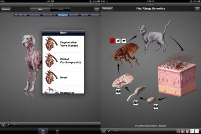 IDIA is a veterinary app that animal doctors can use to diagnose pets with specific conditions. You can view animals in 3D and validate diagnoses, for 300.00