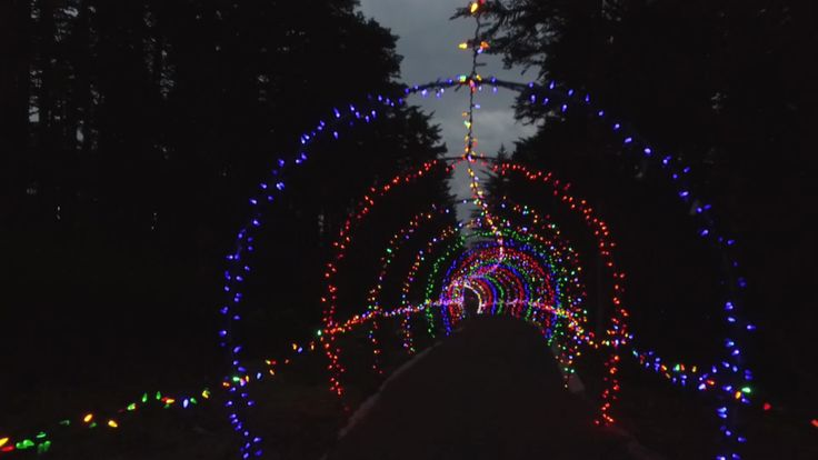 If you subscribe to the Clark Griswold school of holiday lights and believe less is more isn't the motto — you'll find plenty to enjoy at the Memorial University Botanical Garden this festive season.