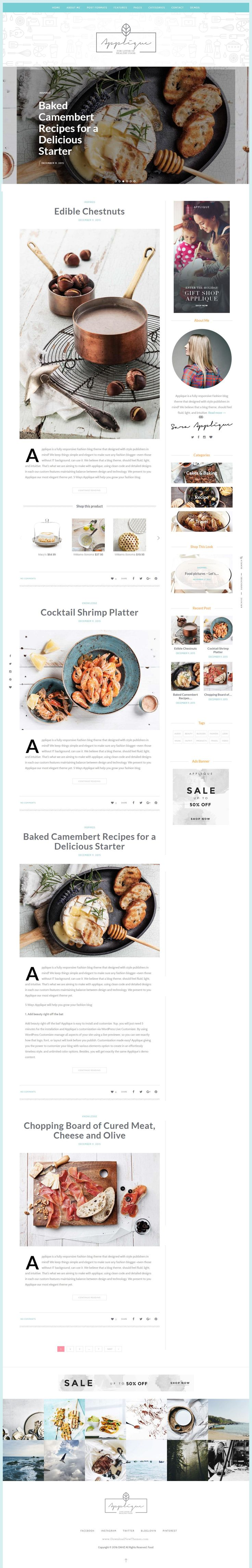 Beautifully Design Appique Food and Recipes Blog Website Theme Download…