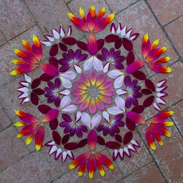 Best 25 Flower Mandala Ideas On Pinterest