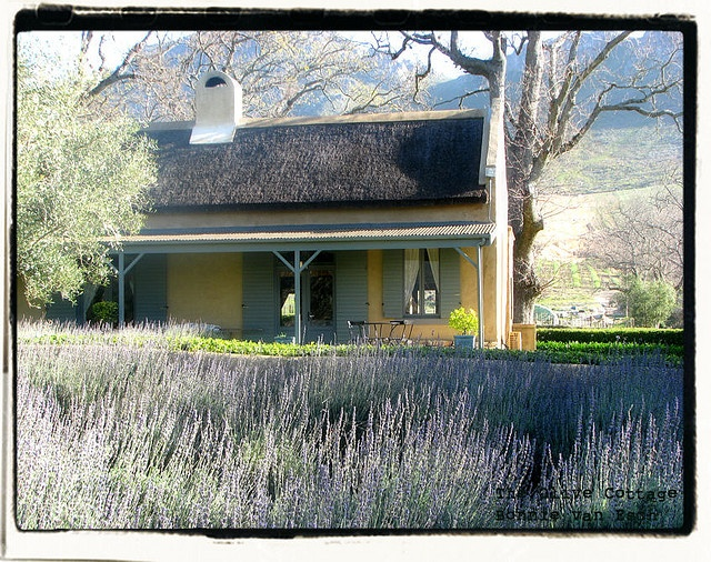 Franschoek, SA.  Perfect colours, perfect proportions.