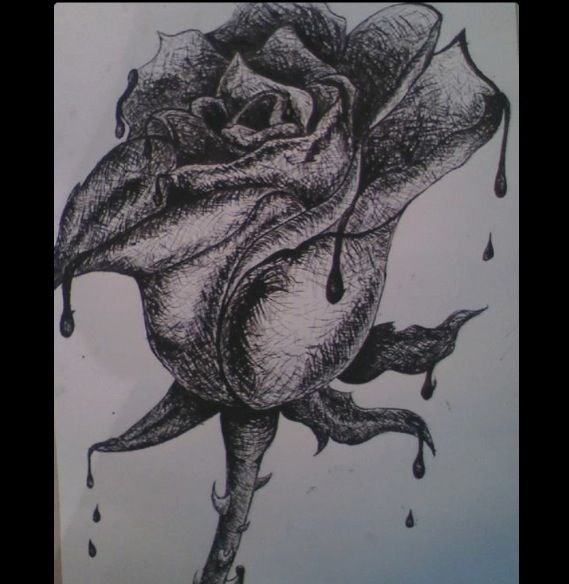 Pen and ink Dripping Rose, before water color