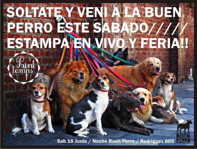 Flyer para Fiestas Buen Perro