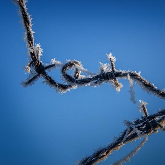 Nieuw in mijn Werk aan de Muur shop: A touch of winter