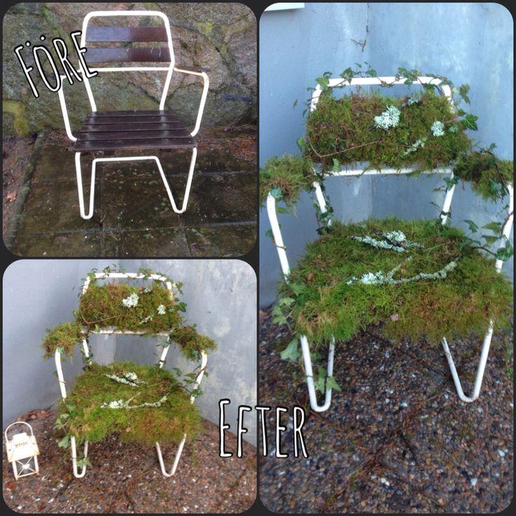 Mossklädd stol #jul #mossa #utemöbler #pynt