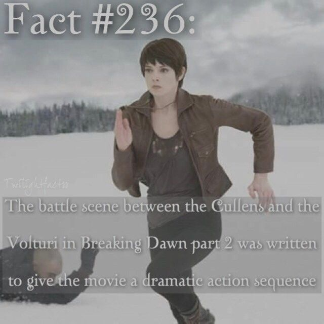 """1,069 Synes godt om, 4 kommentarer – Twilight Facts (@twilightfactss) på Instagram: """"~ Has anyone else noticed how easy it is to spot a fake account? No celebrity posts about…"""""""