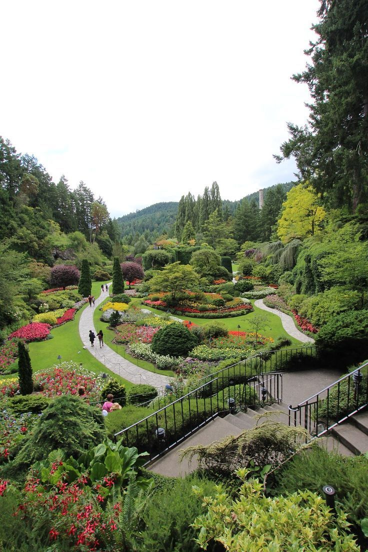 0376d3bef3715e9bd3200b8d8ccb70b4 - How To Get To Butchart Gardens From Vancouver Bc