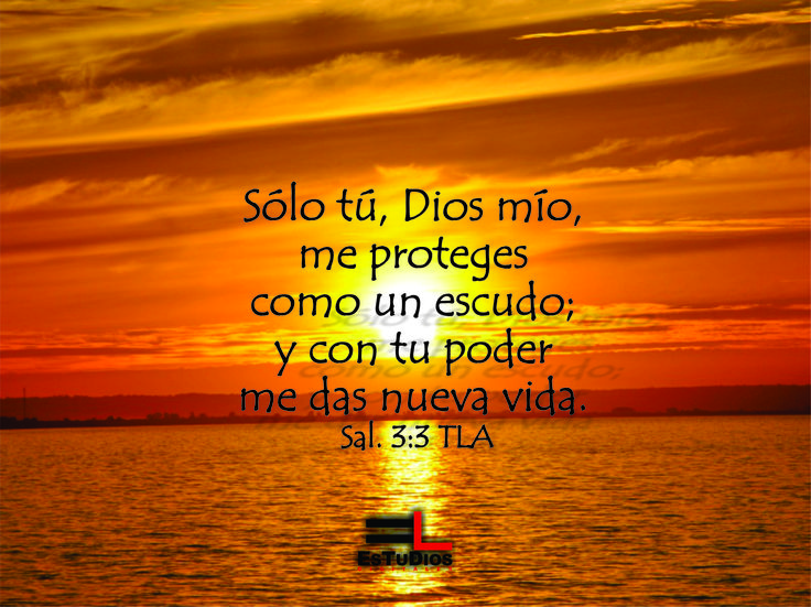 Sólo tú, Dios mío, me proteges como un escudo; y con tu poder me das nueva vida. Salm. 3:3