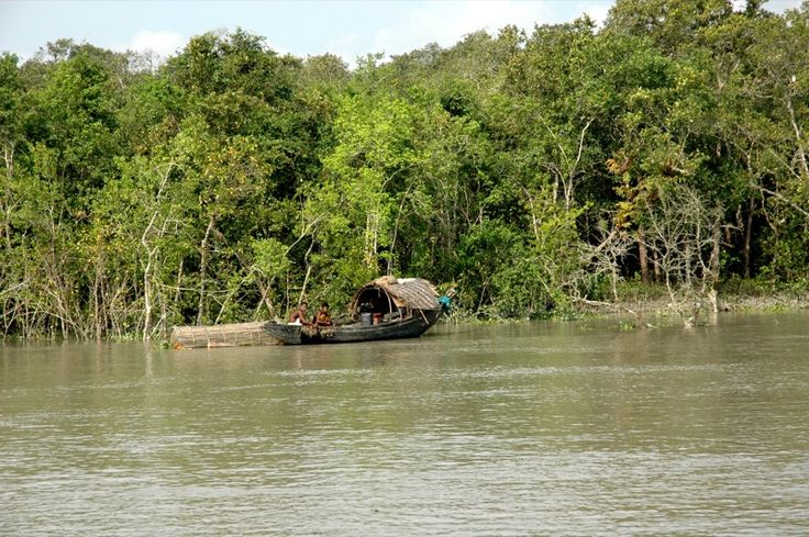 SUNDERBANS....A never ending experience......a heritage tour, a largest Mangrove......