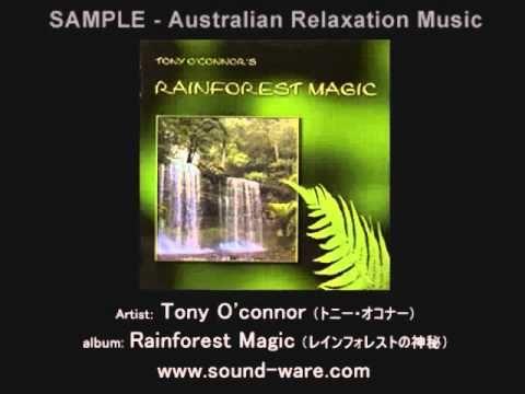 Rainforest Magic - Tony O' Connor