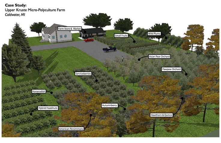 Micro Perennial Farm Edible Landscapes Permaculture