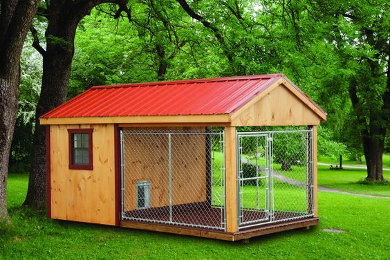 Build your dog a kennel We have used exterior grade plywood for the walls, floor and roof. Description from metalrooftodays.blogspot.com. I searched for this on bing.com/images