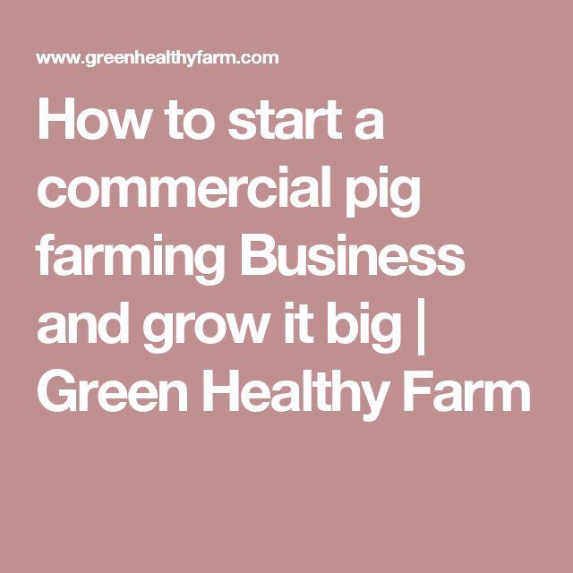 Pig farming business plan in nepali