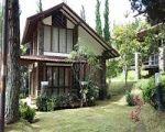 villa minimalis istana bunga