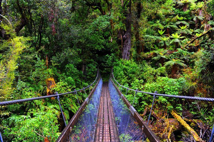 Crossing a footbridge on the hiking trail. #NewZealandwalkingtours #WalkingNewZealand #NewZealandVacations