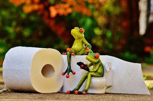 Alexas_Fotos   Pixabay - 65