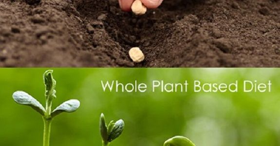 Whole Plant Based Diet Plan To Live Healthier And Longer In 2021 Plant Based Diet Plan Whole Plant Based Diet Plant Based