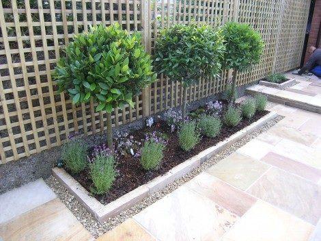 Back garden wall
