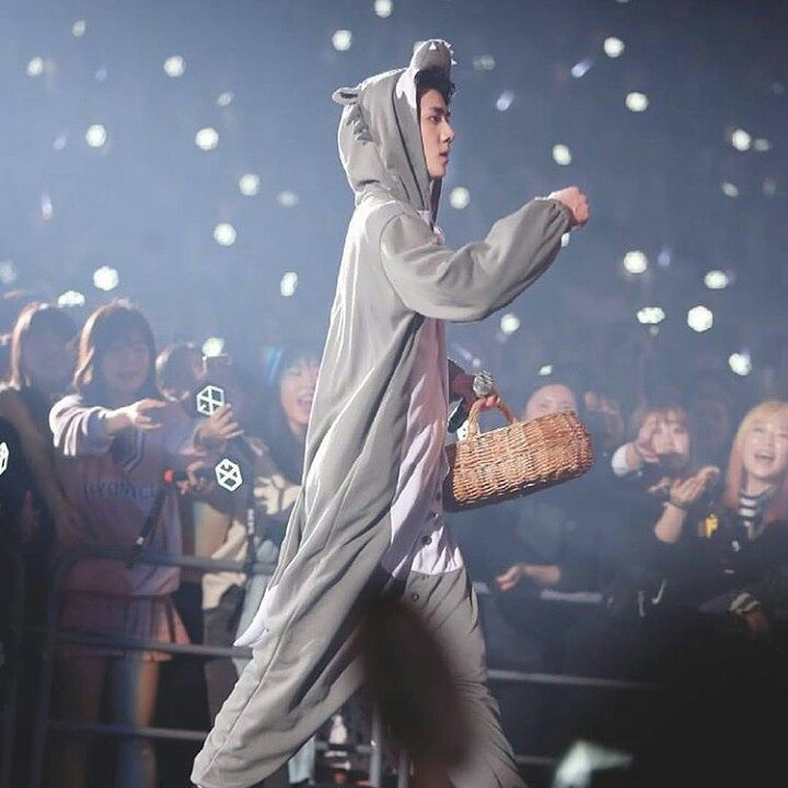 Cute Sehun at the Exo'Luxion dot in Seoul Day-3