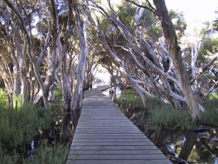 The Hindmarsh River Walk can be started at the Carpark at the end of Bridge Terrace or at the Carpark on Wattle Drive