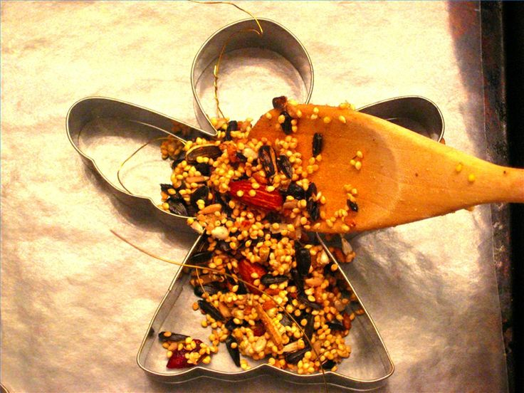 birdseed ornaments for my little nature friends