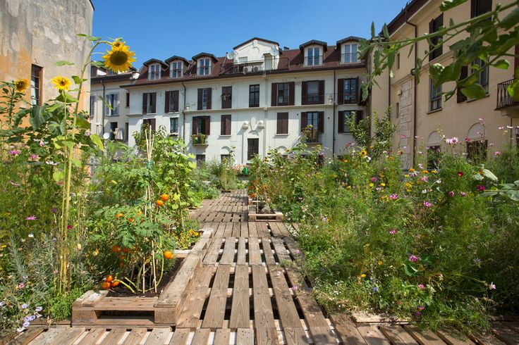 The allotment amidst the courtyards in Milan ©Daniele Cavadini