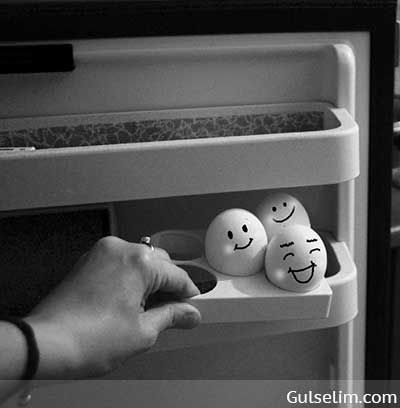 Yumurtaların hikayesi komik yumurtalar komik resim funny eggs story 20