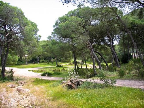 Entorno Laguna del Portil, El Portil - Huelva www.portilplaya.com