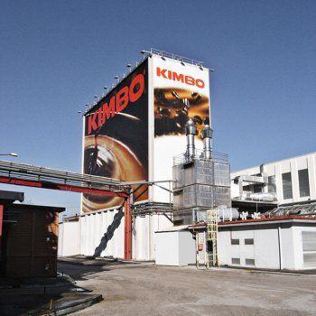 Kimbo Coffee Plant