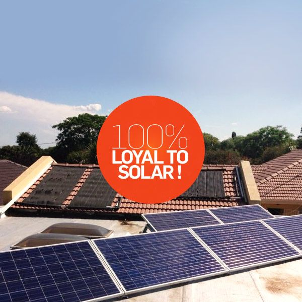Commitment to solar power pays off for this new SUNWORX client in Springs, East Rand. A Bronze system supporting this homes essential needs will produce 2448 kWh p.a. Saving them money and helping reduce carbon emissions.