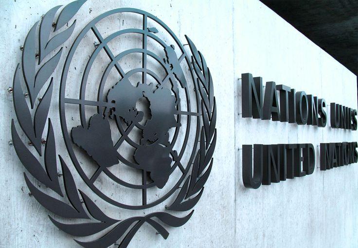 L'ONU (Organizzazione delle Nazioni Unite)