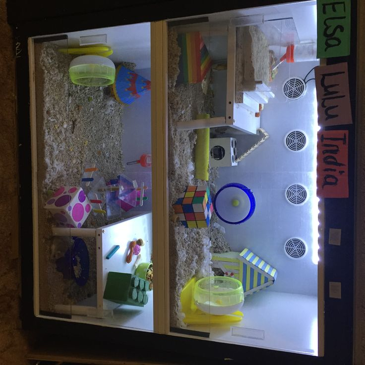 Make an amazing ikea hamster cage pets pinterest for Ikea hamster cage