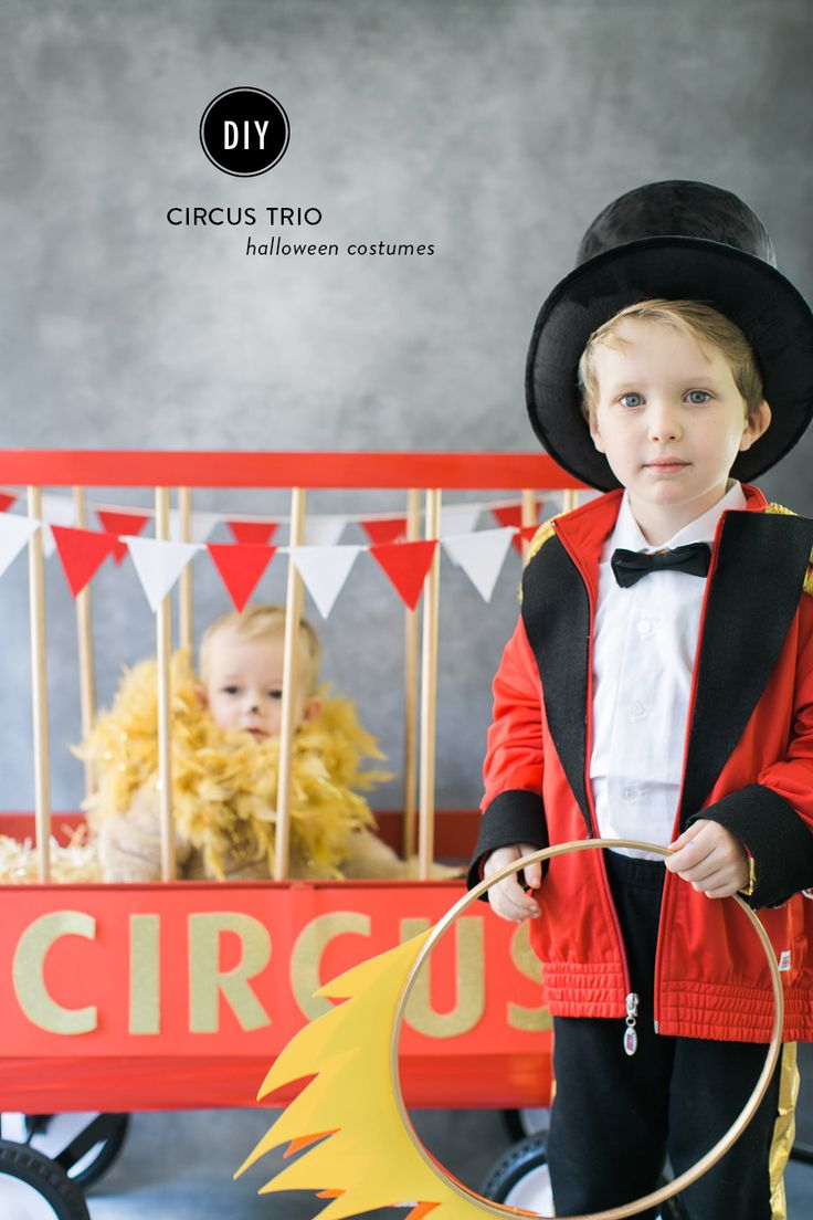 Diy Halloween Costume Circus Lion Parties Amp Holidays