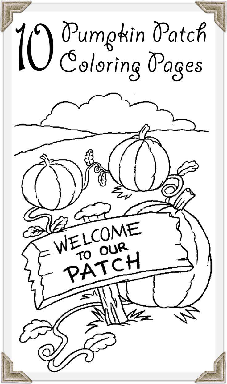 25+ bästa Pumpkin patches idéerna på Pinterest